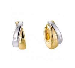 Boucles d'oreilles en or blanc et or jaune